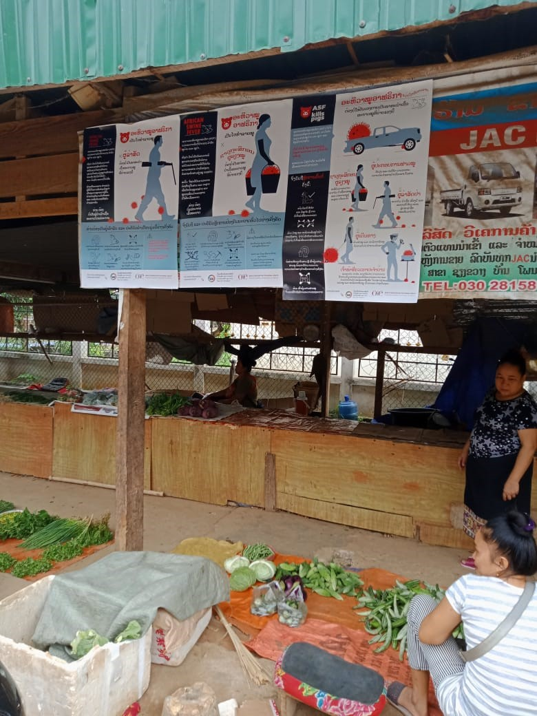 OIE posters in Laos
